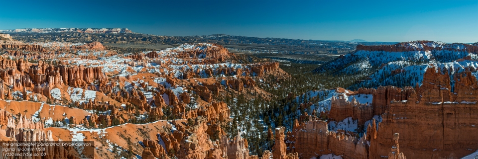 the amphitheater, bryce canyon national park